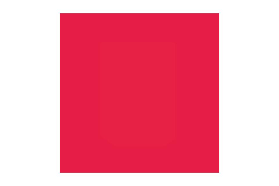 EMS Herzblut Icon